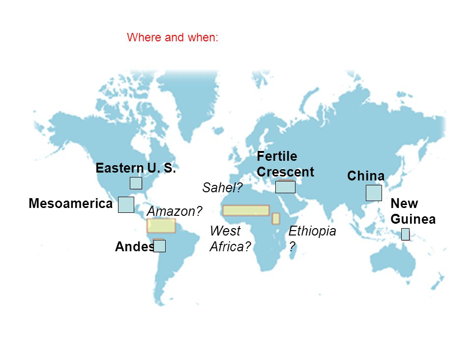 Where and when: Sahel? West Africa? Ethiopia ? Fertile Crescent China New Guinea Andes Amazon? Mesoamerica Eastern U. S.