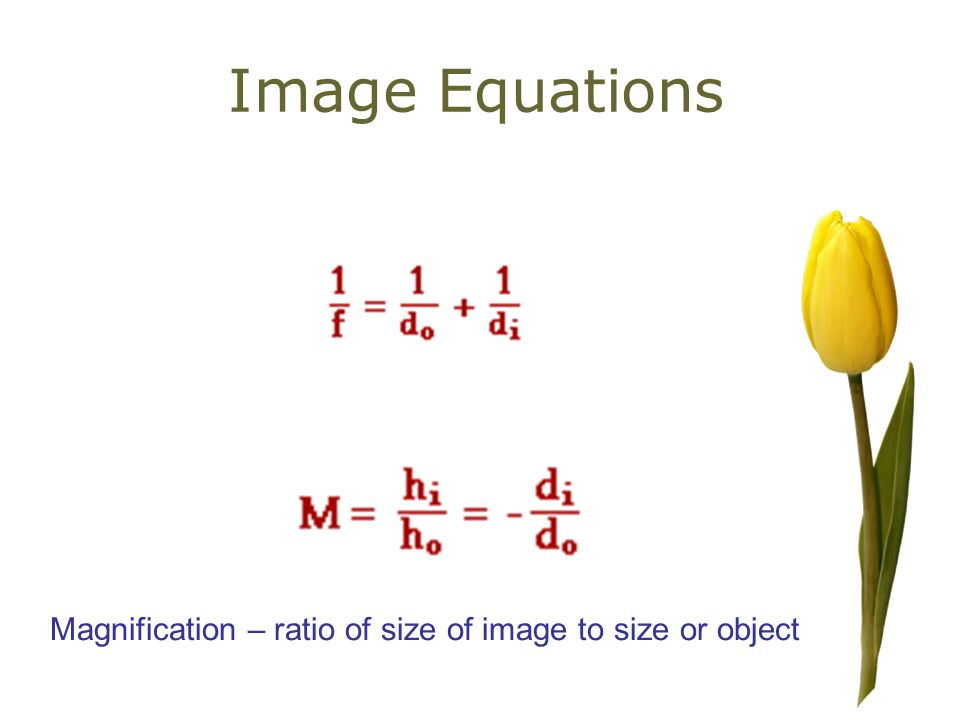 Image Equations Magnification – ratio of size of image to size or object