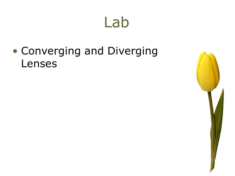 Lab Converging and Diverging Lenses