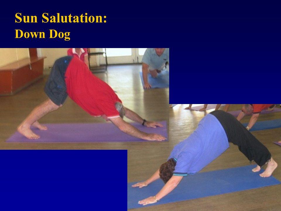 Sun Salutation: Down Dog