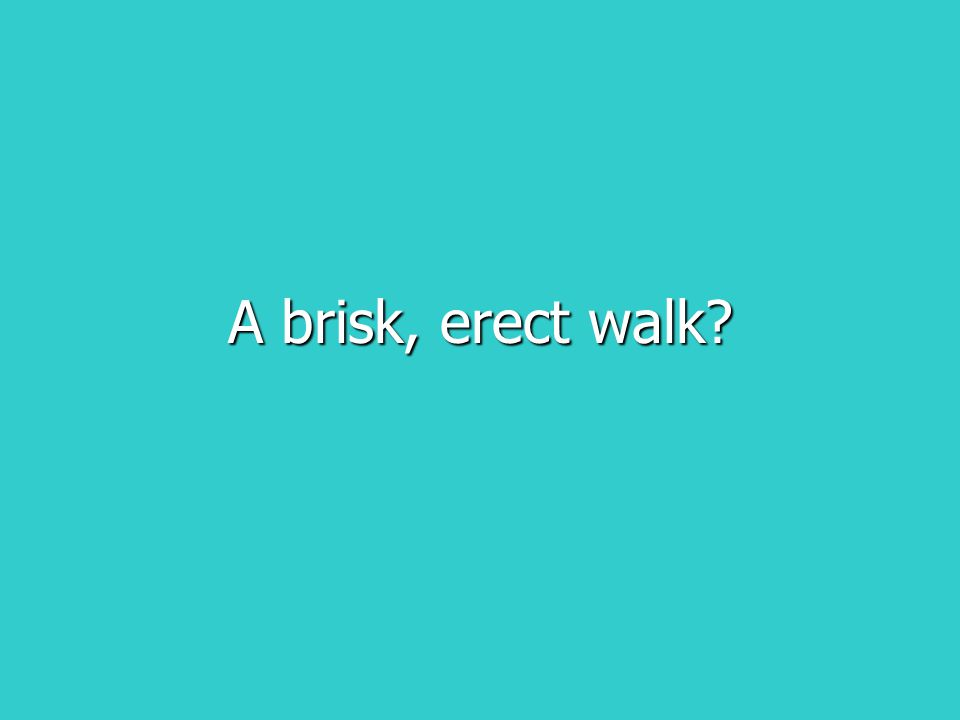 A brisk, erect walk