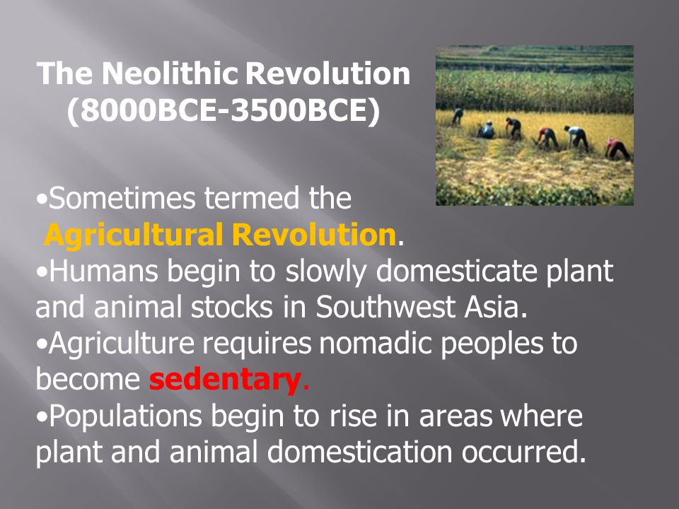 The Neolithic Revolution (8000BCE-3500BCE) Sometimes termed the Agricultural Revolution.