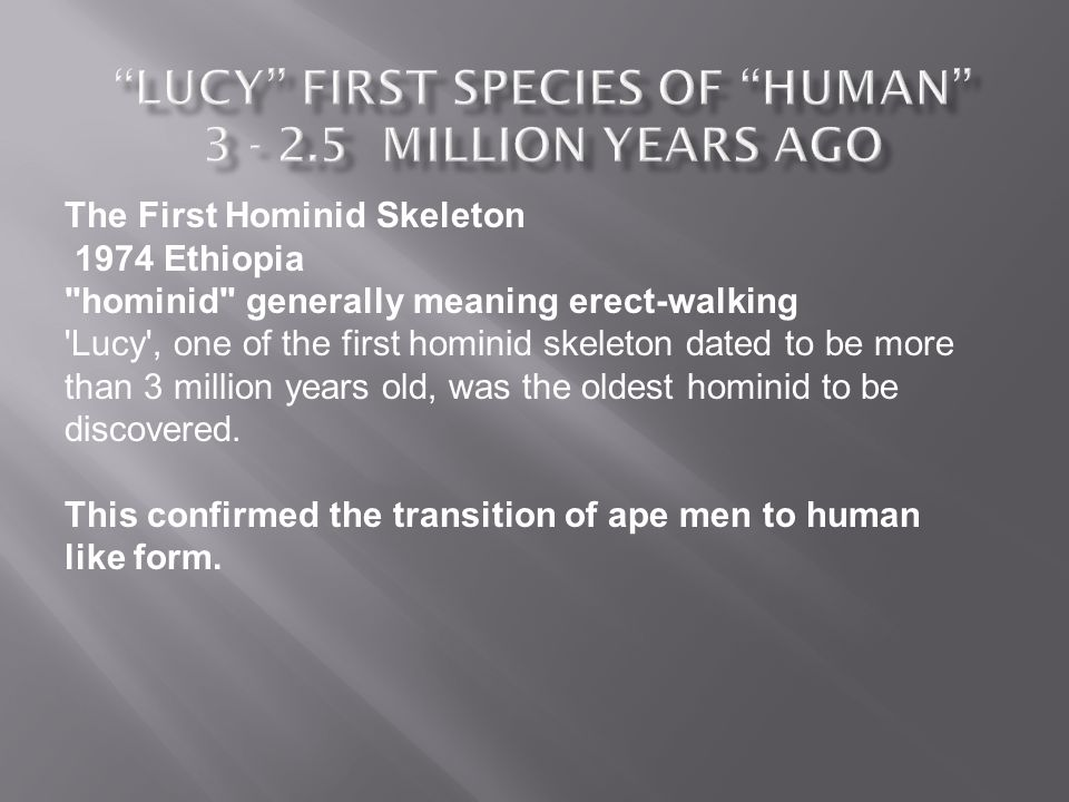 The First Hominid Skeleton 1974 Ethiopia hominid generally meaning erect-walking Lucy , one of the first hominid skeleton dated to be more than 3 million years old, was the oldest hominid to be discovered.