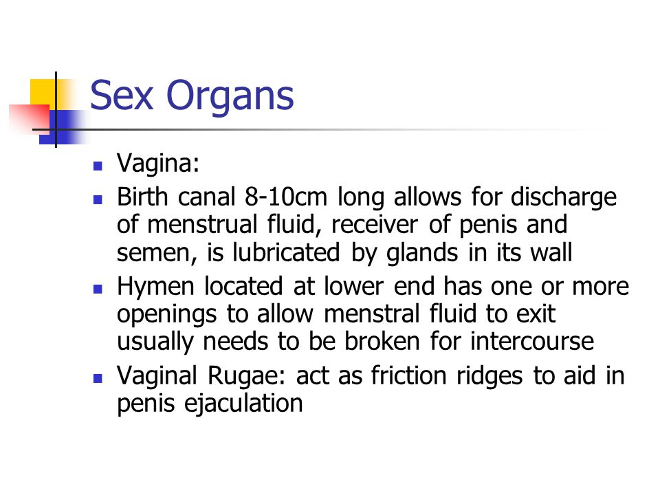 Sex Organs Vagina: Birth canal 8-10cm long allows for discharge of menstrual fluid, receiver of penis and semen, is lubricated by glands in its wall H