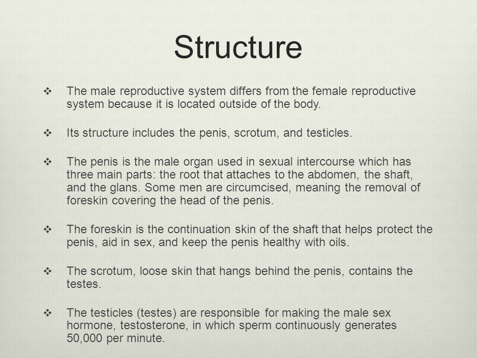 Structure  The male reproductive system differs from the female reproductive system because it is located outside of the body.  Its structure includ