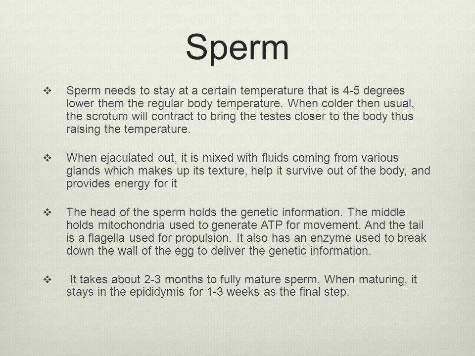 Sperm  Sperm needs to stay at a certain temperature that is 4-5 degrees lower them the regular body temperature. When colder then usual, the scrotum