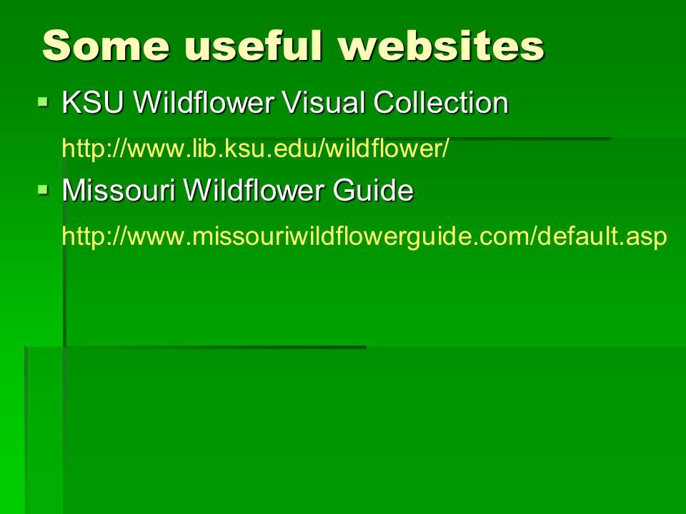 Some useful websites  KSU Wildflower Visual Collection http://www.lib.ksu.edu/wildflower/  Missouri Wildflower Guide http://www.missouriwildflowerguide.com/default.asp