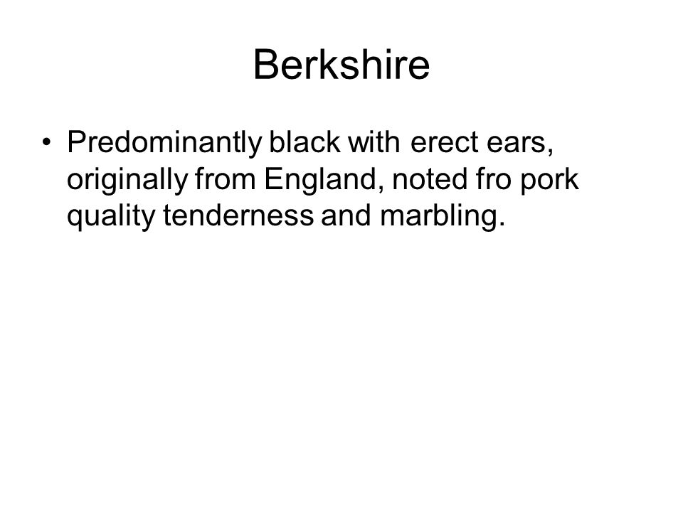 Berkshire Predominantly black with erect ears, originally from England, noted fro pork quality tenderness and marbling.