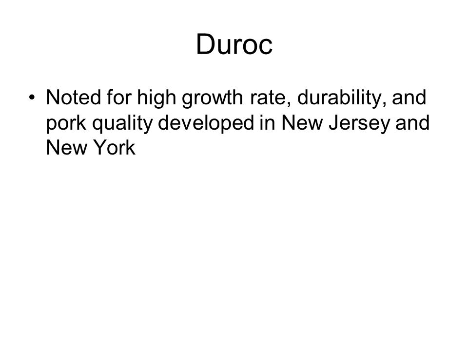 Duroc Noted for high growth rate, durability, and pork quality developed in New Jersey and New York