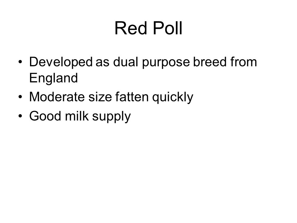Red Poll Developed as dual purpose breed from England Moderate size fatten quickly Good milk supply