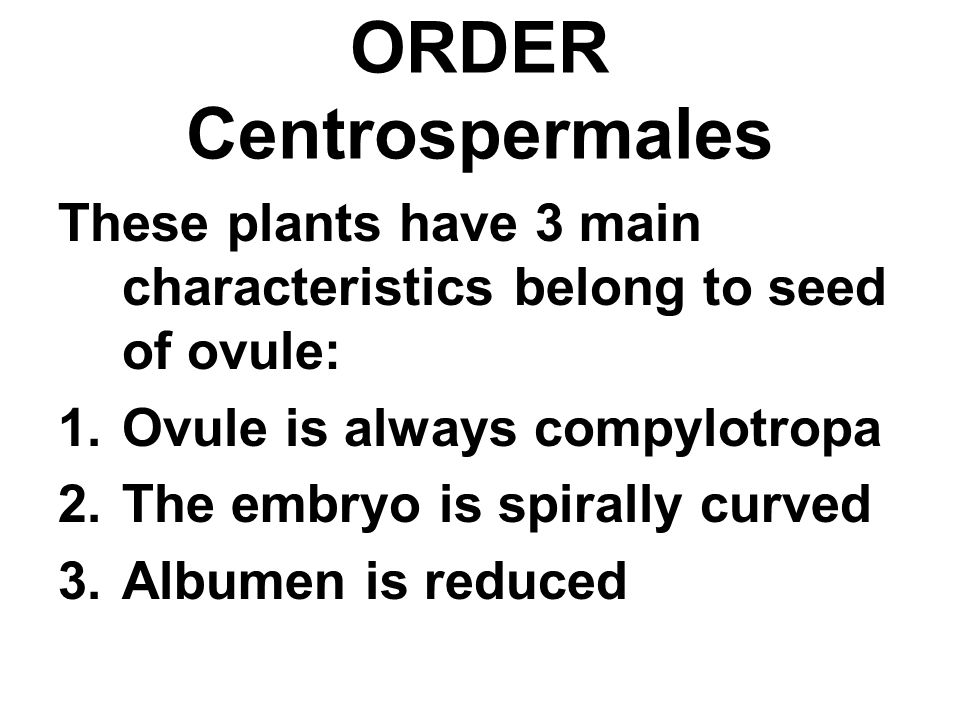 ORDER Centrospermales These plants have 3 main characteristics belong to seed of ovule: 1.Ovule is always compylotropa 2.The embryo is spirally curved