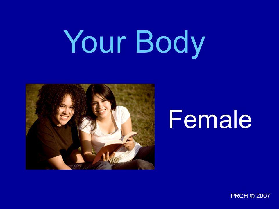 PRCH © 2007 Female Your Body