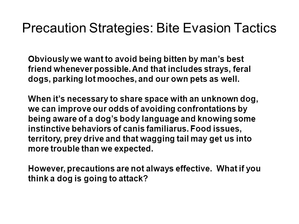 Precaution Strategies: Bite Evasion Tactics Obviously we want to avoid being bitten by man's best friend whenever possible. And that includes strays,