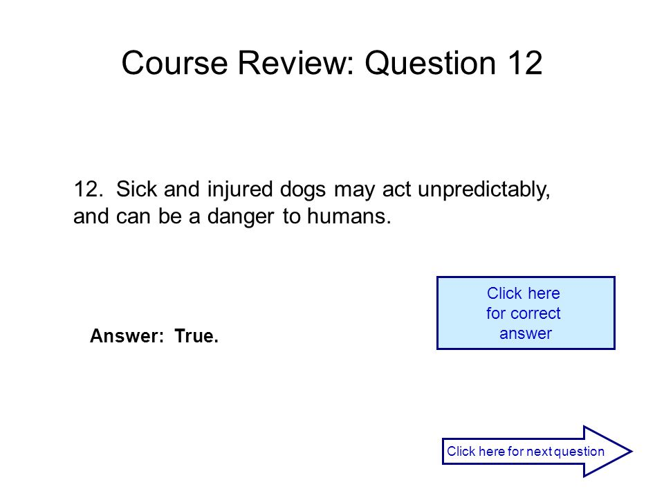 Course Review: Question 12 12. Sick and injured dogs may act unpredictably, and can be a danger to humans. Answer: True. Click here for correct answer