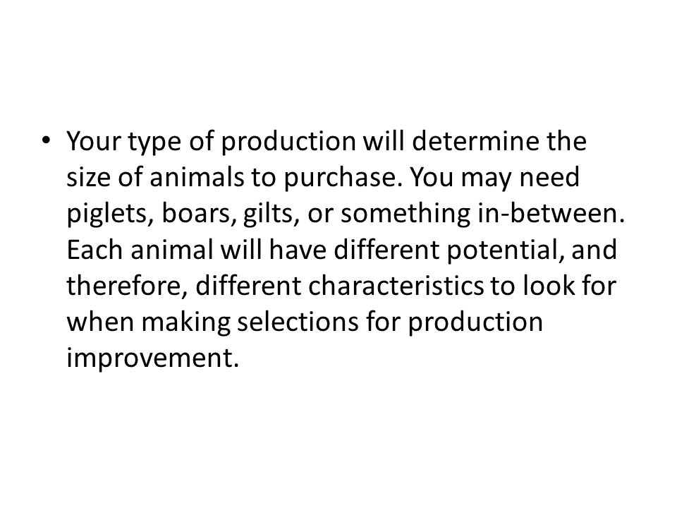 Your type of production will determine the size of animals to purchase.