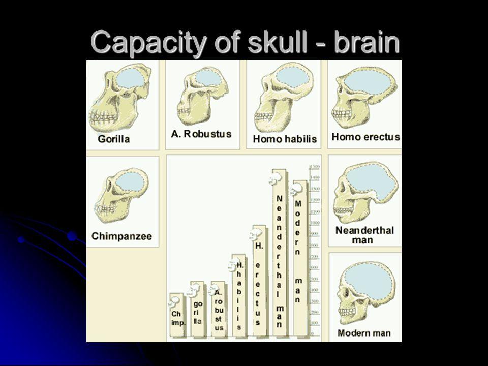 Capacity of skull - brain