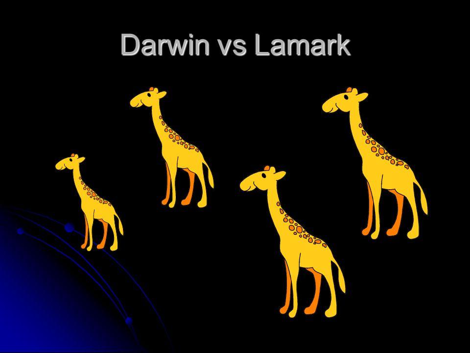 Darwin vs Lamark