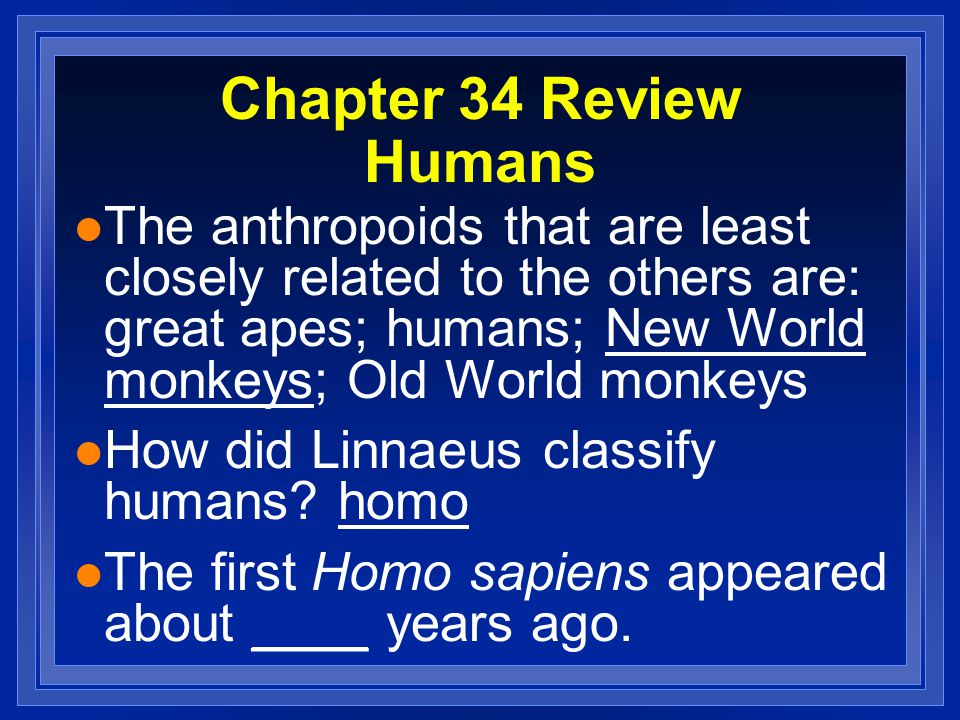 Chapter 34 Review Humans l The anthropoids that are least closely related to the others are: great apes; humans; New World monkeys; Old World monkeys