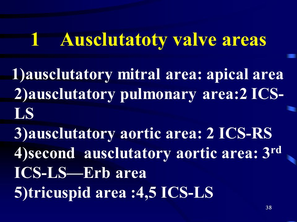 38 1 Ausclutatoty valve areas 1)ausclutatory mitral area: apical area 2)ausclutatory pulmonary area:2 ICS- LS 3)ausclutatory aortic area: 2 ICS-RS 4)second ausclutatory aortic area: 3 rd ICS-LS—Erb area 5)tricuspid area :4,5 ICS-LS