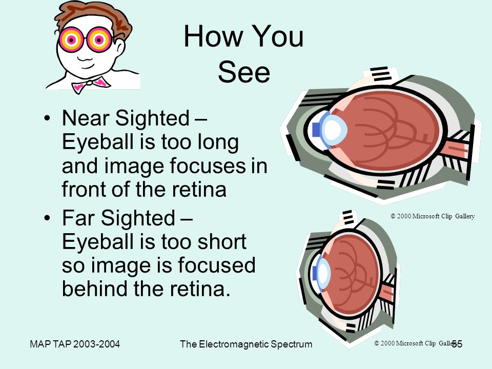 MAP TAP 2003-2004The Electromagnetic Spectrum54 How You See Retina – – Lens refracts light to converge on the retina.