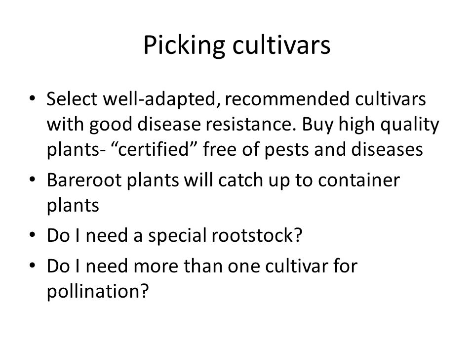 Picking cultivars Select well-adapted, recommended cultivars with good disease resistance.