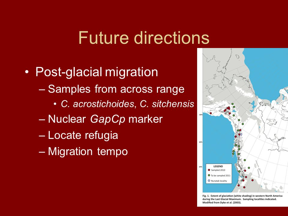 Future directions Post-glacial migration –Samples from across range C.