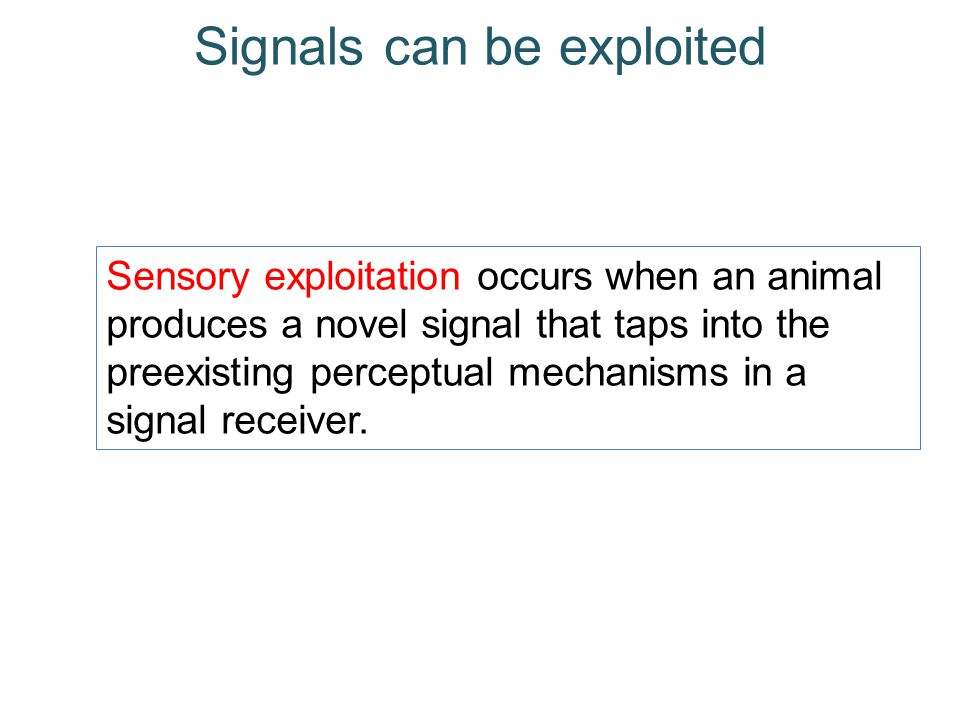 Signals can be exploited Sensory exploitation occurs when an animal produces a novel signal that taps into the preexisting perceptual mechanisms in a signal receiver.