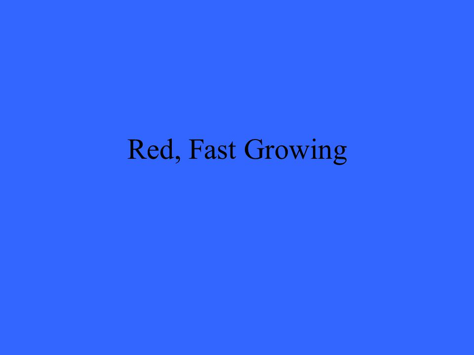 Red, Fast Growing