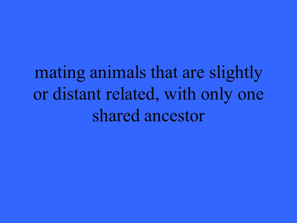 mating animals that are slightly or distant related, with only one shared ancestor