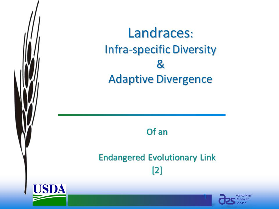 1 Landraces : Infra-specific Diversity & Adaptive Divergence Of an Endangered Evolutionary Link [2]