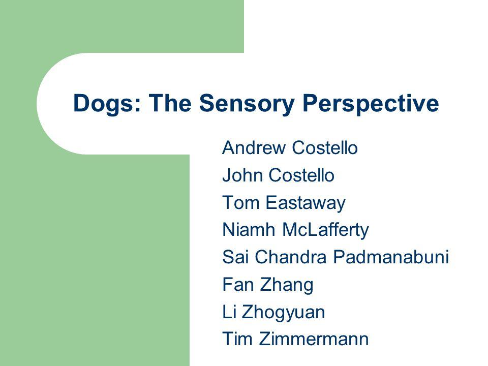 Andrew Costello John Costello Tom Eastaway Niamh McLafferty Sai Chandra Padmanabuni Fan Zhang Li Zhogyuan Tim Zimmermann Dogs: The Sensory Perspective