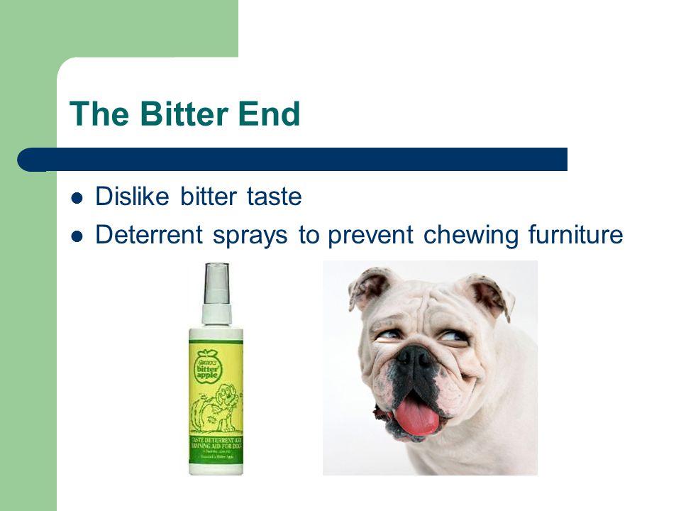 The Bitter End Dislike bitter taste Deterrent sprays to prevent chewing furniture