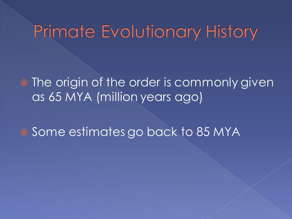  The origin of the order is commonly given as 65 MYA (million years ago)  Some estimates go back to 85 MYA