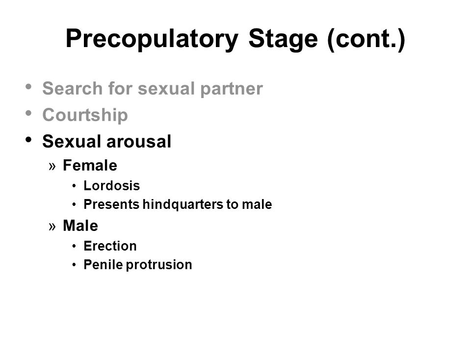 Precopulatory Stage (cont.) Search for sexual partner Courtship Sexual arousal »Female Lordosis Presents hindquarters to male »Male Erection Penile pr