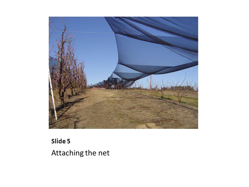 Slide 5 Attaching the net