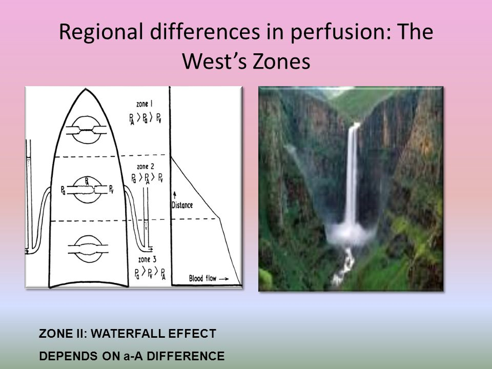 Regional differences in perfusion: The West's Zones ZONE II: WATERFALL EFFECT DEPENDS ON a-A DIFFERENCE