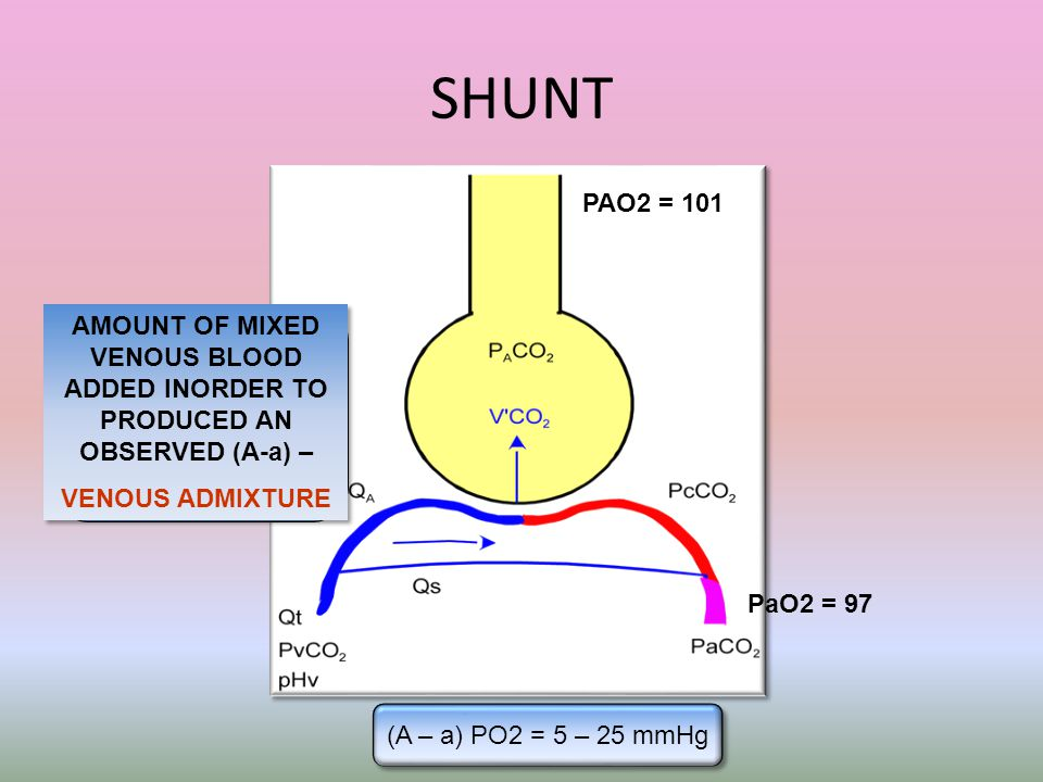 SHUNT (A – a) PO2 = 5 – 25 mmHg PAO2 = 101 PaO2 = 97 AMOUNT OF MIXED VENOUS BLOOD ADDED INORDER TO PRODUCED AN OBSERVED (A-a) – VENOUS ADMIXTURE AMOUN