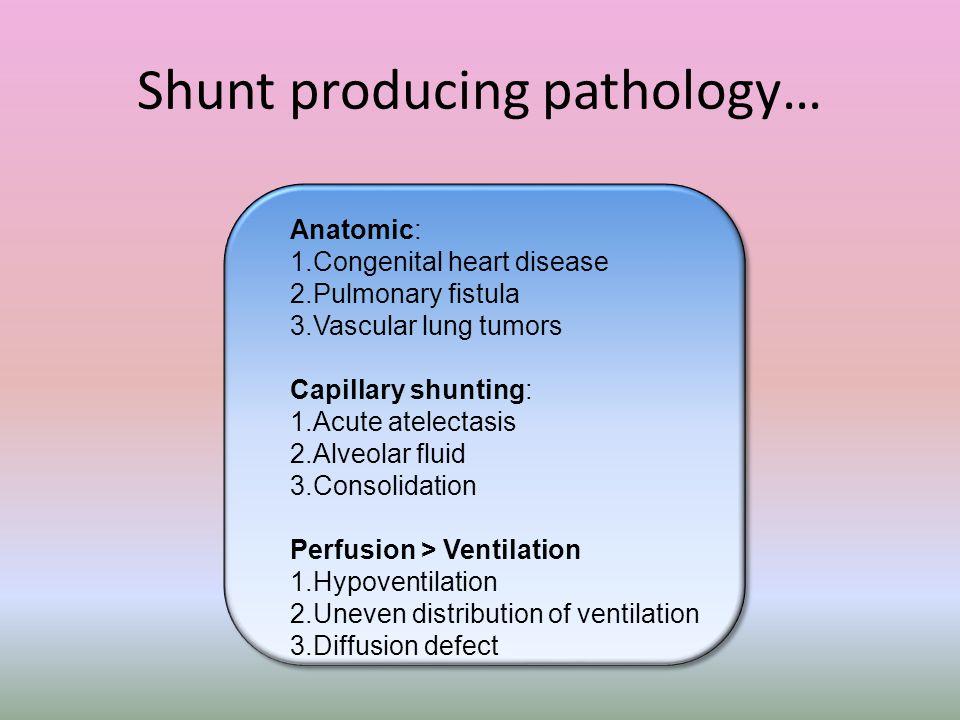 Shunt producing pathology… Anatomic: 1.Congenital heart disease 2.Pulmonary fistula 3.Vascular lung tumors Capillary shunting: 1.Acute atelectasis 2.A