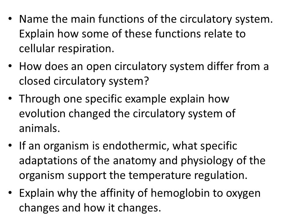 Name the main functions of the circulatory system. Explain how some of these functions relate to cellular respiration. How does an open circulatory sy