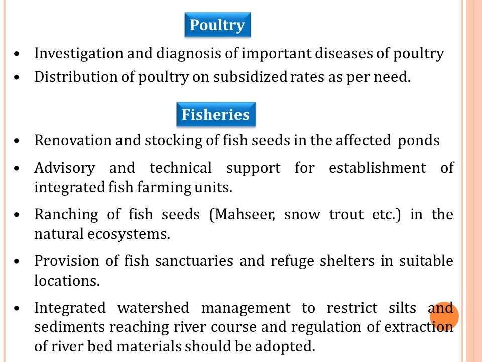 Investigation and diagnosis of important diseases of poultry Distribution of poultry on subsidized rates as per need. Poultry Fisheries Renovation and