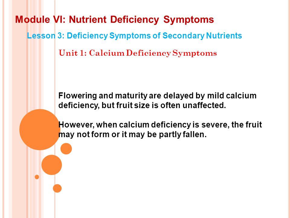 Module VI: Nutrient Deficiency Symptoms Lesson 3: Deficiency Symptoms of Secondary Nutrients Unit 1: Calcium Deficiency Symptoms With this, the Unit 1 on Calcium Deficiency Symptoms in sorghum in this Lesson concludes.