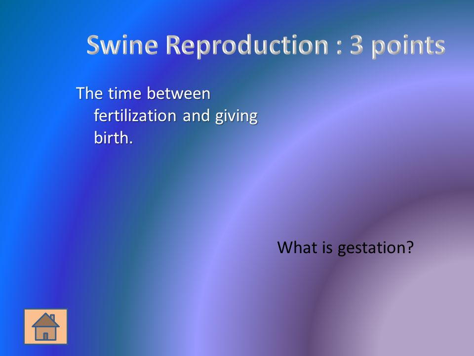 The time between fertilization and giving birth. What is gestation