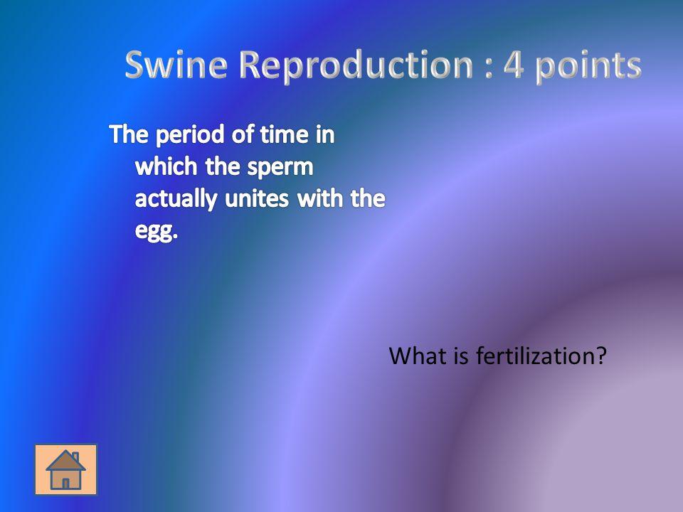 What is fertilization?