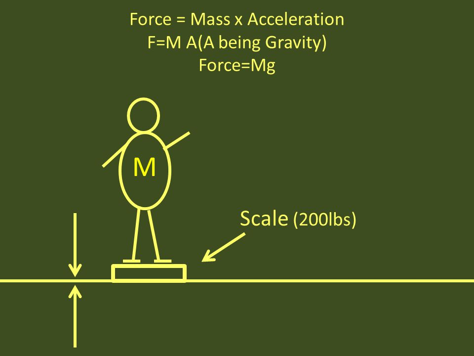 M Scale (200lbs) Force = Mass x Acceleration F=M A(A being Gravity) Force=Mg