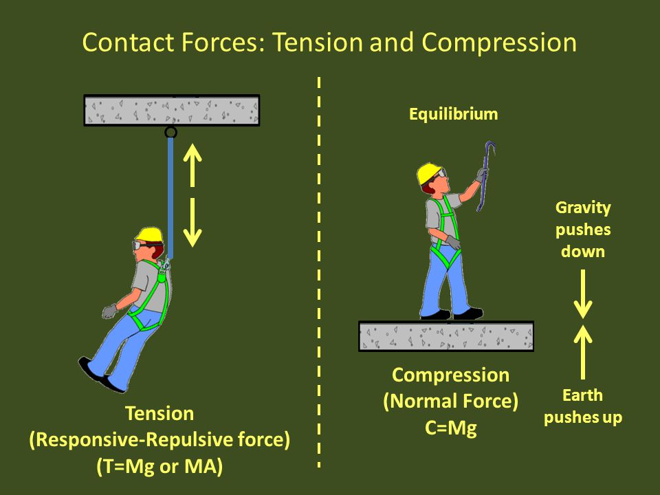 Contact Forces: Tension and Compression Compression (Normal Force) C=Mg Earth pushes up Gravity pushes down Equilibrium Tension (Responsive-Repulsive