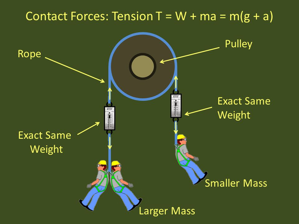 Smaller Mass Larger Mass Exact Same Weight Exact Same Weight Contact Forces: Tension T = W + ma = m(g + a) Pulley Rope