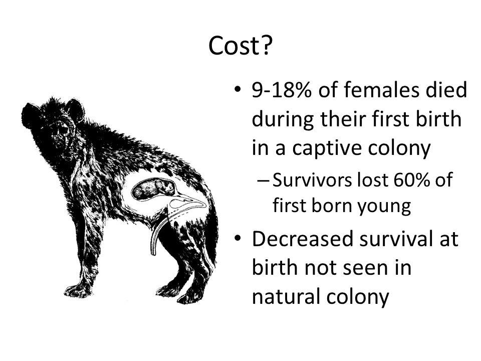 Cost.
