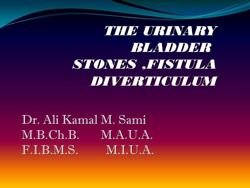 THE URINARY BLADDER STONES,FISTULA DIVERTICULUM Dr.