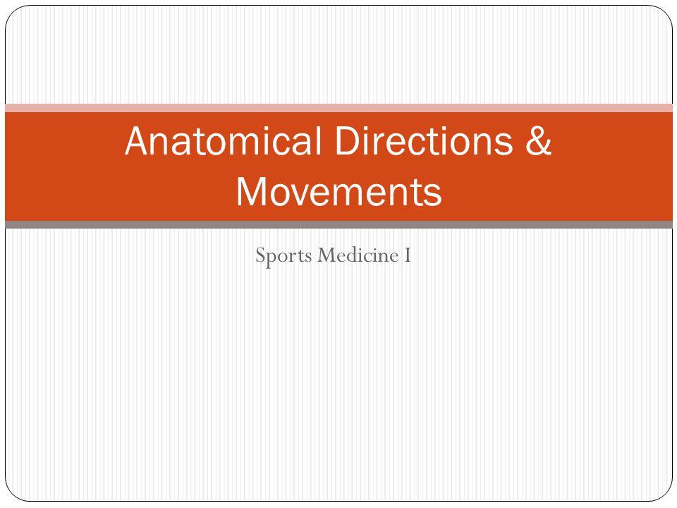 Sports Medicine I Anatomical Directions & Movements