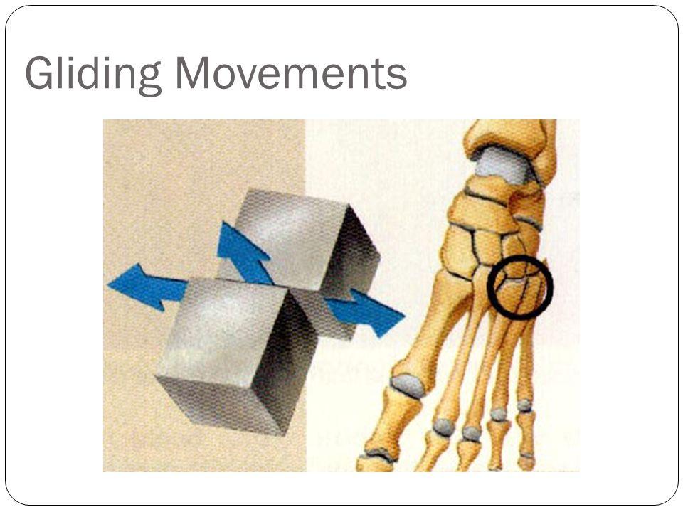 Gliding Movements